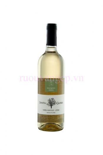 Santa Gloria Sauvignon Blanc
